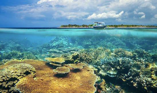 coral_reef_gili_meno
