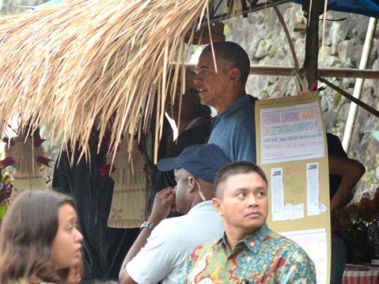 Obama Jatiluwih in shade