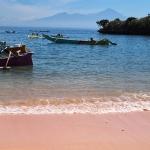 pink sand beach lombok island