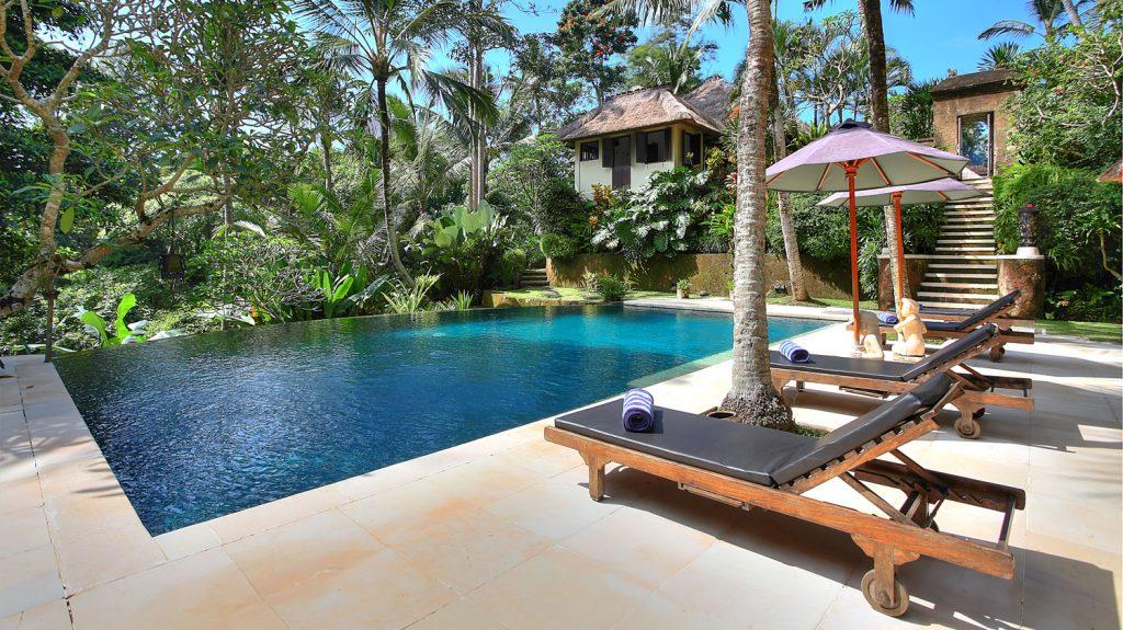 Villa Alamanda - Swimming pool with jungle backdrop
