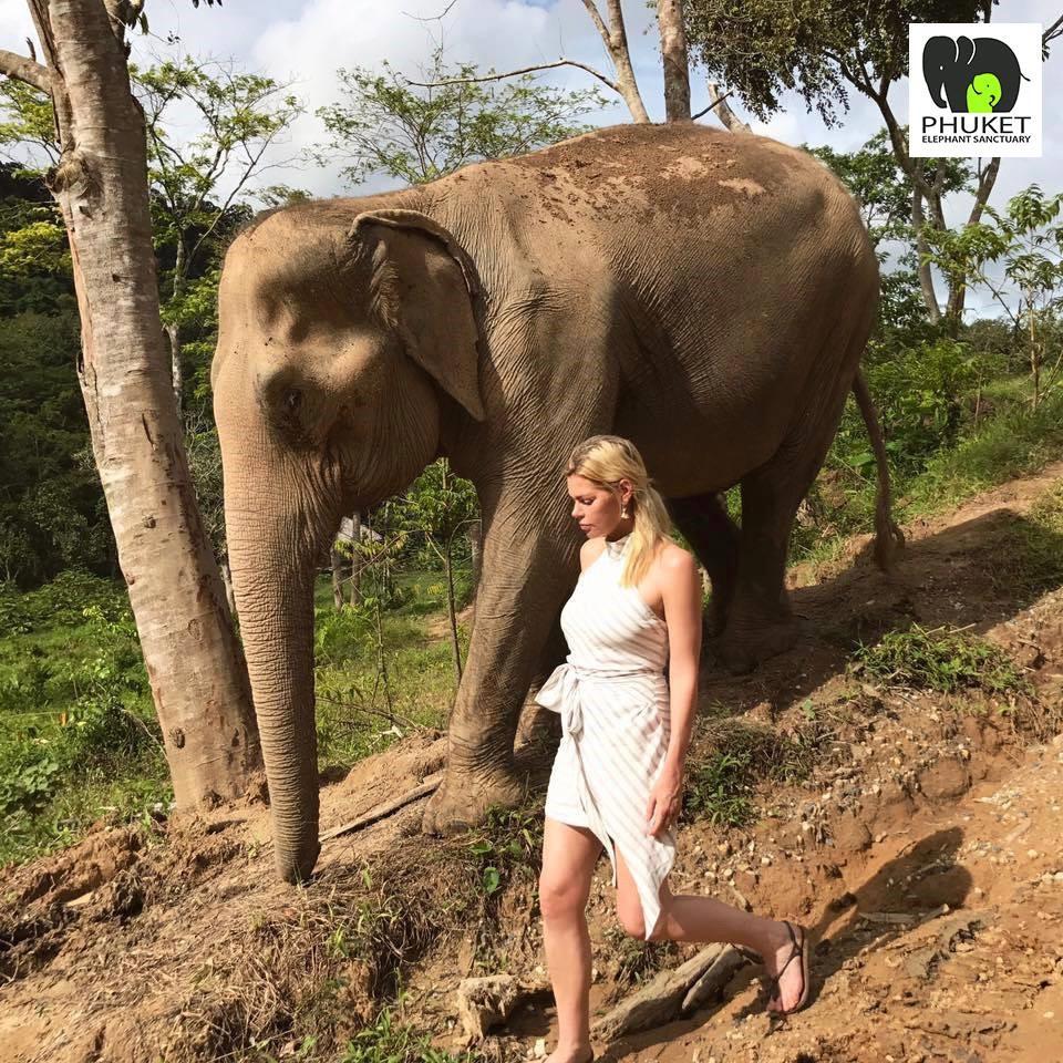 Elephant sanctuary, Phuket