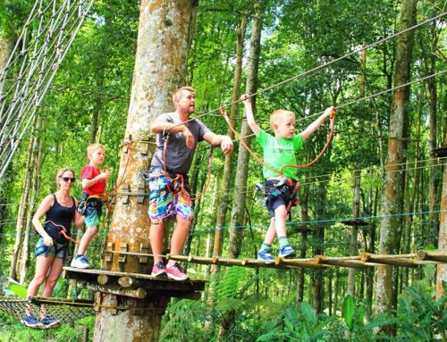 5 Places to Take Your Kids in Bali