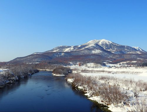 Niseko Ski vs Rest of the World: What to Expect in Japan's Powder Capital